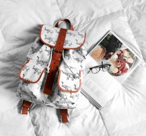 Backpack, backback ...